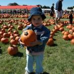 Visit our Pumpkin Patch
